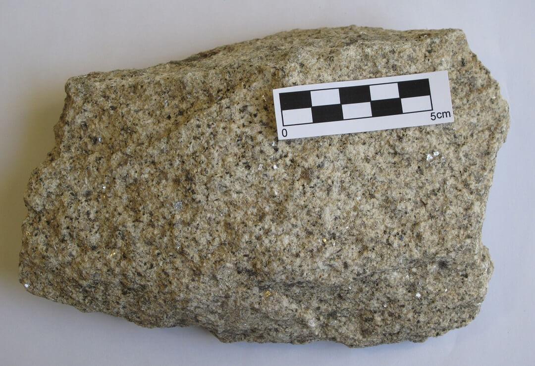 roca-1.jpg