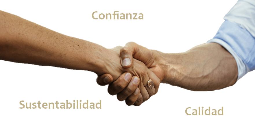 manos.png